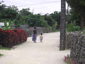 竹富島夕景