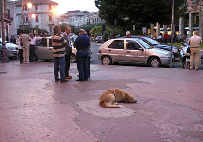 夕暮れのピタゴラス広場にて