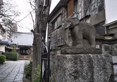 瑞泰寺の象