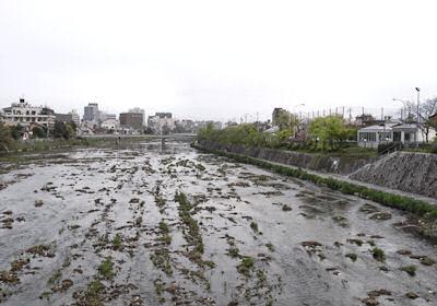 京都・七条大橋から見た鴨川