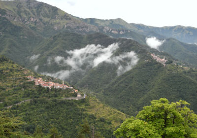 付近の山岳都市の眺め