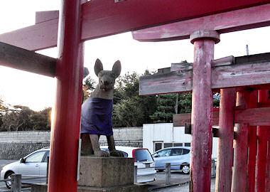 御幣稲荷神社の狐