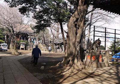 谷中諏訪神社