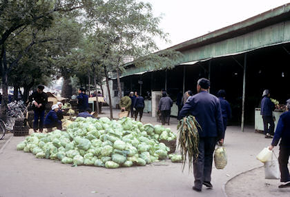北京市内1985年