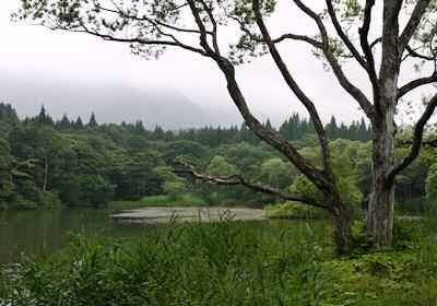 黒姫山をバックにした御鹿池