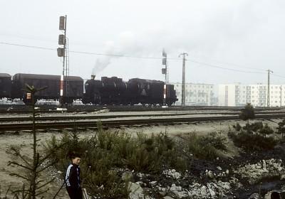 サツマーレの蒸気機関車