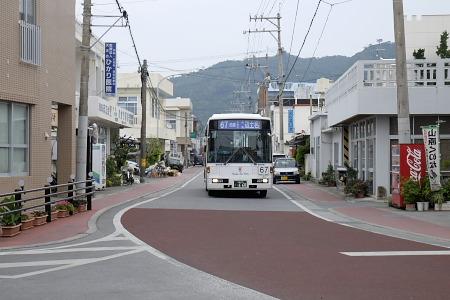 辺土名シャンゼリゼをゆくバス