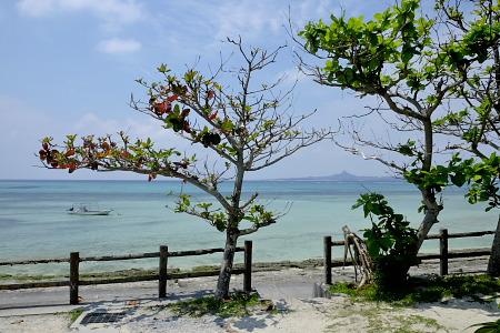 備瀬から見る伊江島