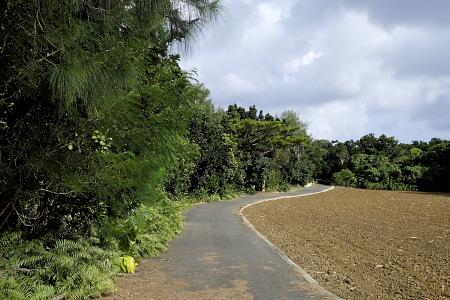 多良間島の道