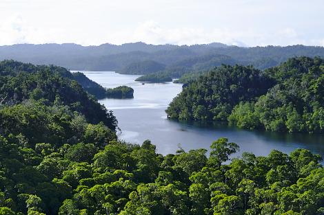 岩山から見た水路側の眺め
