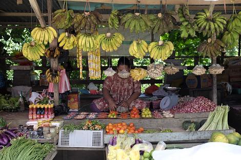 ワイサイの市場