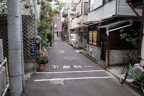 京島三丁目のネコ